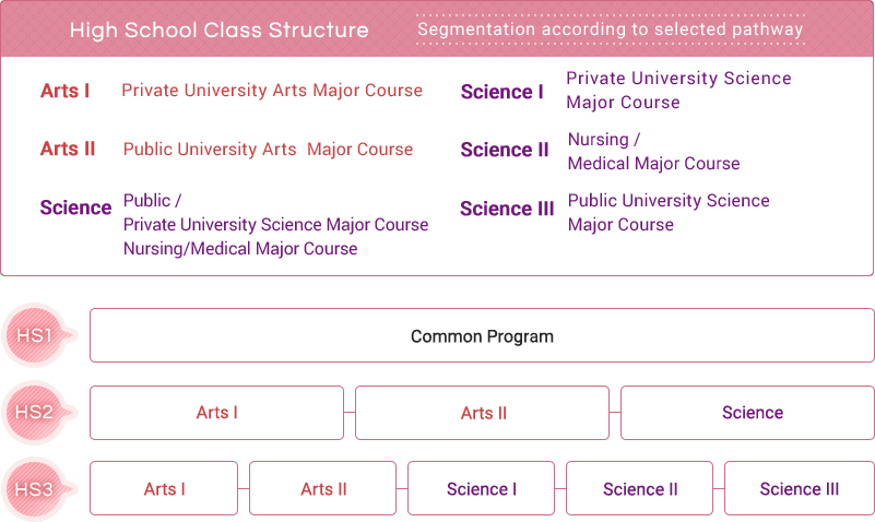 High School Class Structure   Segmentation according to selected pathway
